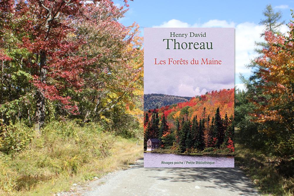 """""""Les Forêts du Maine"""", de Henry David Thoreau, éditions Rivages poche"""