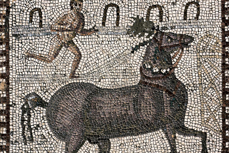 «L'Enéide, illustrée par les fresques et les mosaïques antiques », de Virgile, Diane de Selliers Editeur