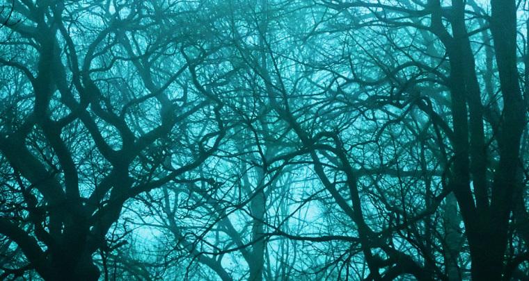Repenser la Conscience, entre paranormal et mystique
