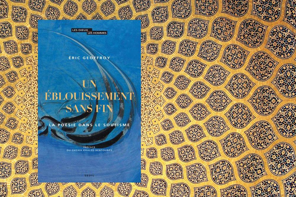 """""""Un éblouissement sans fin"""" d'Eric Geoffroy, Editions Seuil"""