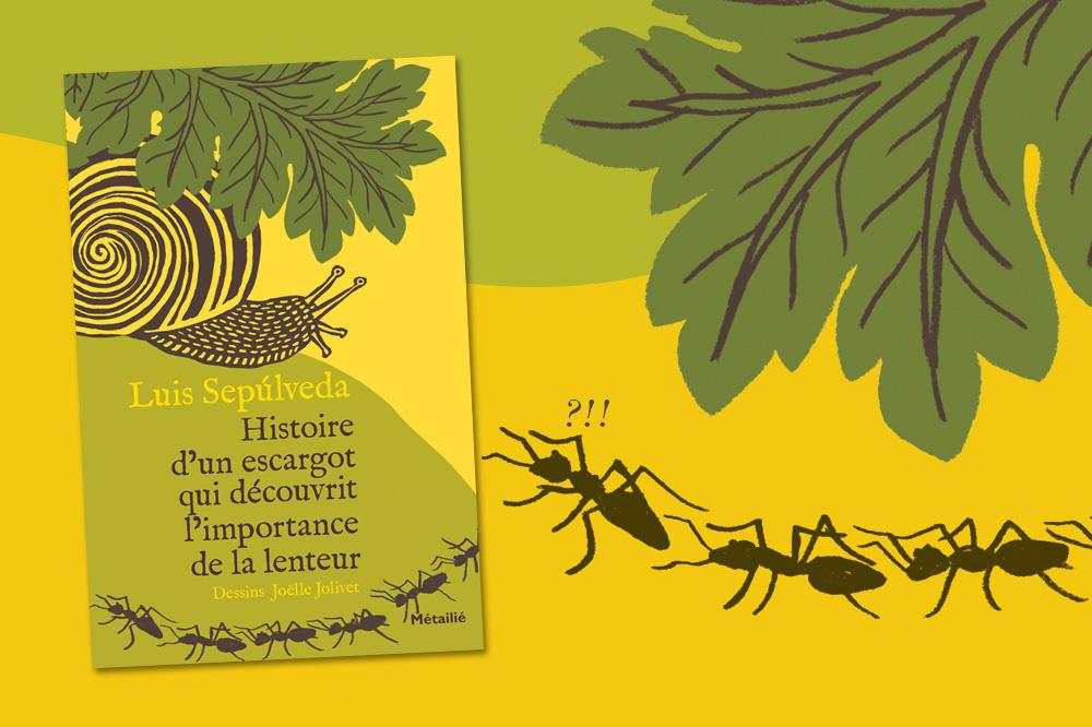 « Histoire d'un escargot qui découvrit l'importance de la lenteur » de Luis Sepúlveda, dessins Joëlle Jolivet, éditions Métailié