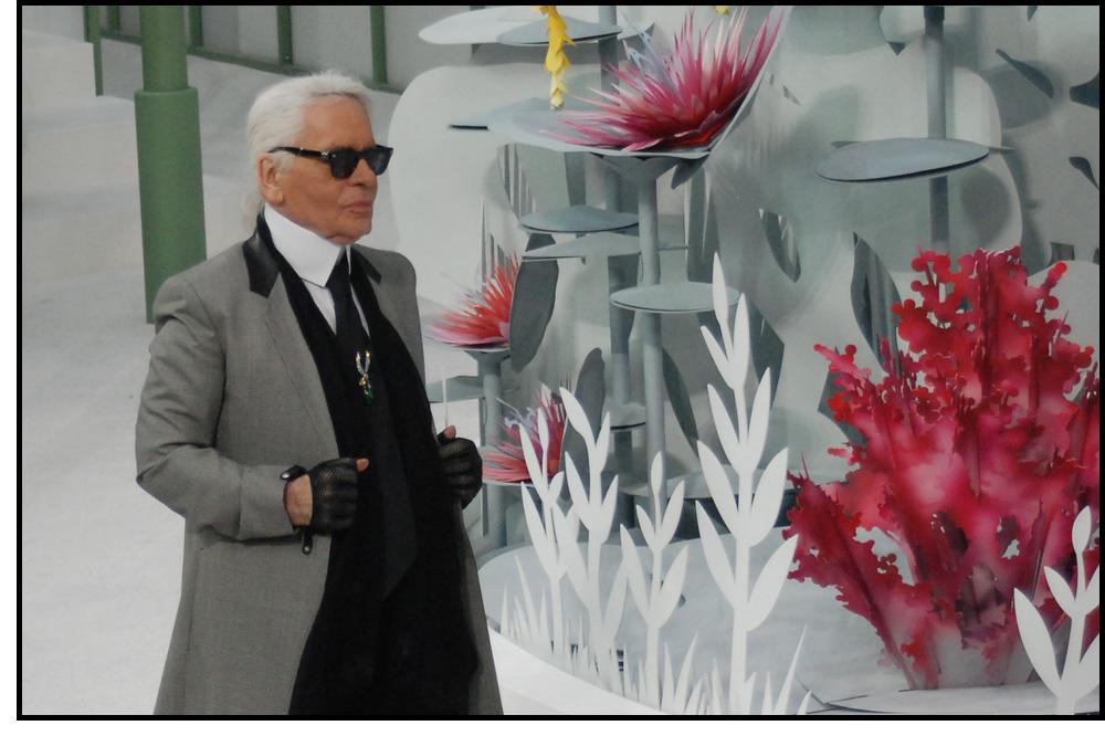 Chanel-defile-haute-couture_janvier-2015_grand-palais-Paris_27