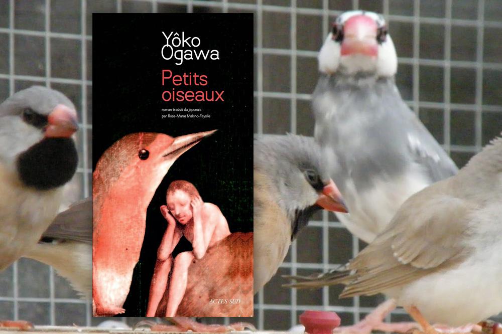 Petits oiseaux » de Yôko Ogawa, éditions Actes Sud