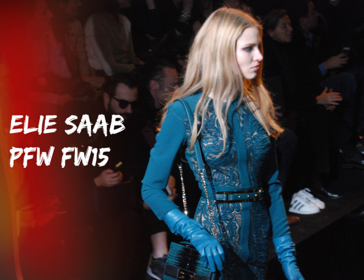 Paris Fashion Week FW15 : Elie Saab
