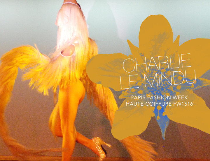 Paris Fashion Week Haute Coiffure FW15/16 : Charlie Le Mindu