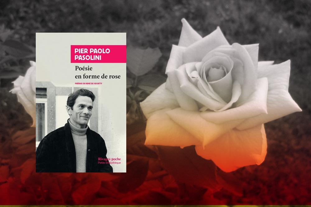 """""""Poésie en forme de rose"""" de Pier Paolo Pasolini - Editions Rivages"""