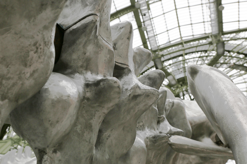 Monumenta-Huang-Yong-Ping_le-mot-et-la-chose_Stephane-Chemin_21