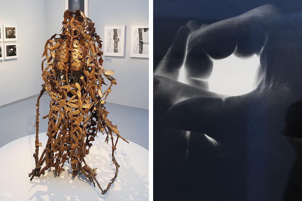 Musee-rodin_entre-sculpture-et-photographie_le-mot-et-la-chose_stephane-chemin_11_Giuseppe-PENONE