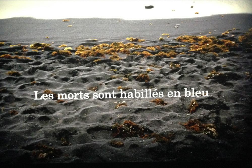 Michel-Houellebecq_Rester-vivant_palais-de-tokyo_le-mot-et-la-chose_02