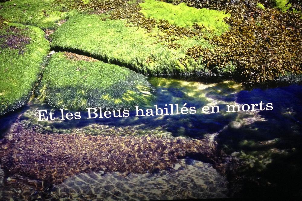 Michel-Houellebecq_Rester-vivant_palais-de-tokyo_le-mot-et-la-chose_03