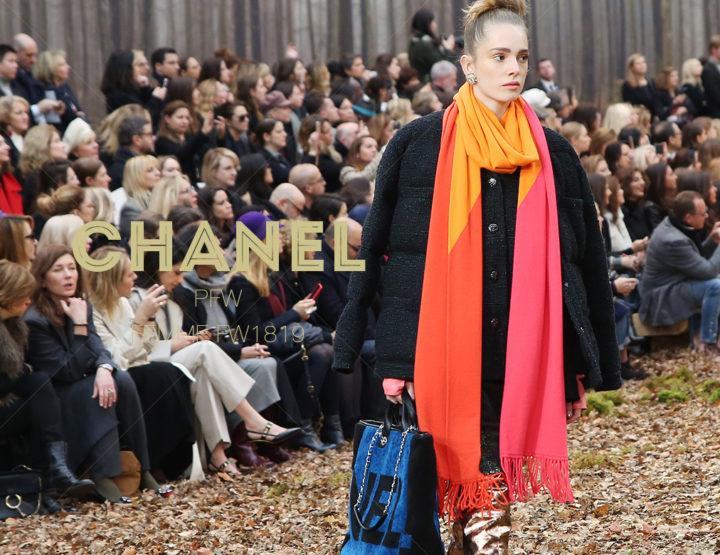 Paris Fashion Week Femme FW1819 : Chanel