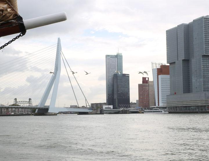 Architecture et street art à Rotterdam